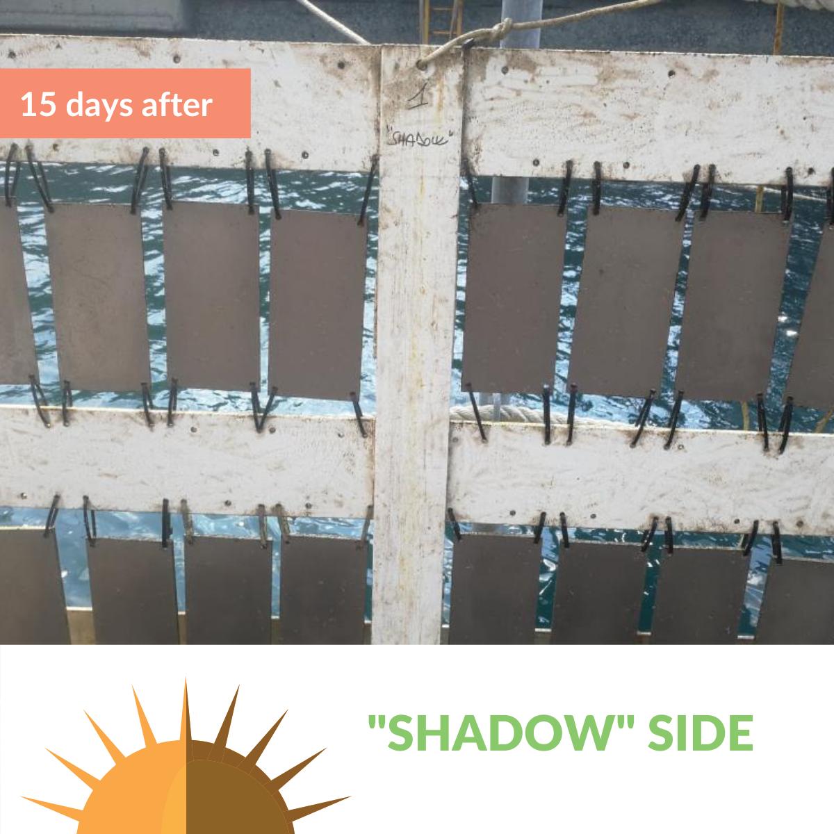micoatec_rack après immersion_3_shadow
