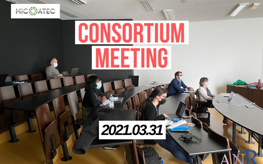M12 Consortium meeting